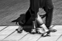 © Giuseppe Tripodo