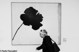© Palo Fiaccadori