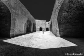 © Paolo Fiaccadori